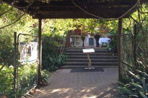 Ladies High Tea Camellia Gardens